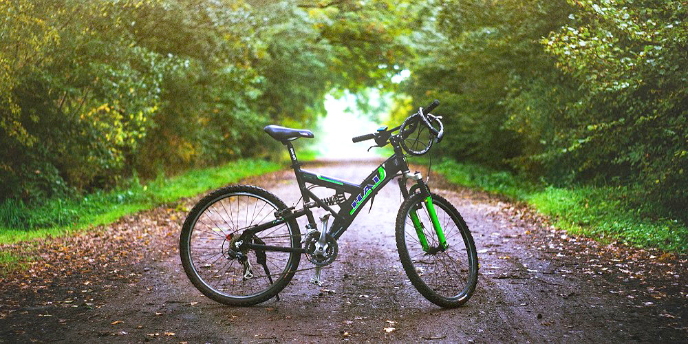 Mountainbike Mountainbiking